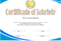 Awesome 10 Certificate Of Championship Template Designs Free