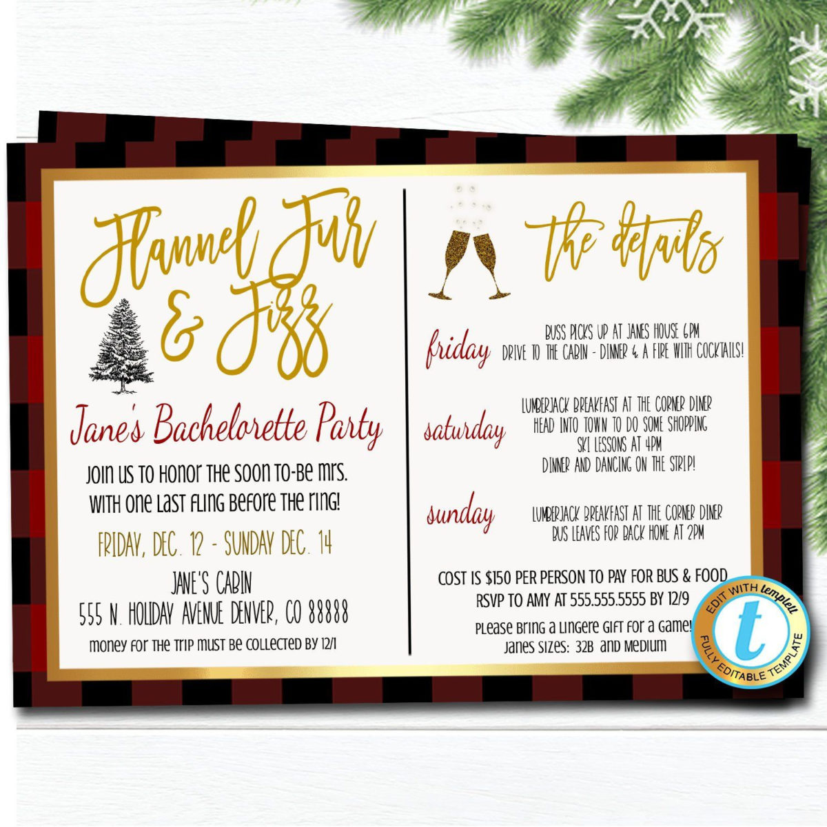 Professional Bridal Shower Itinerary Template