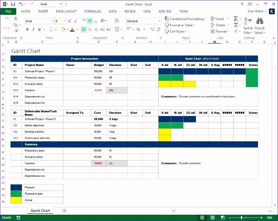 Free Capacity Management Plan Template