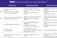 New Project Management Maturity Assessment Template