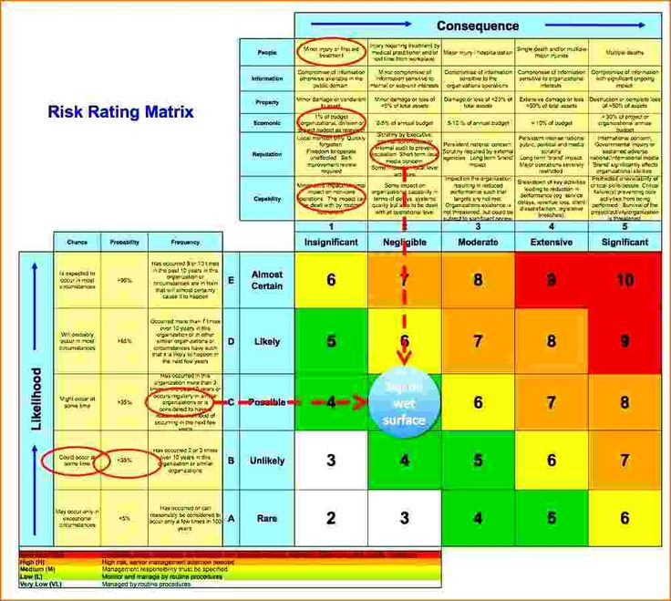 New Project Management Risk Assessment Template