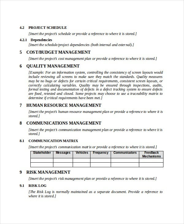 Professional Project Management Memo Template