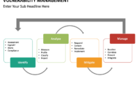Professional Vulnerability Management Policy Template